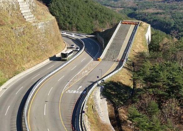 accidente-tráfico-mortal-camión-vehículo-indemnización-reclamar-seguro-por-abogado